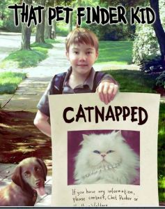 That Pet Finder Kid Catnapped
