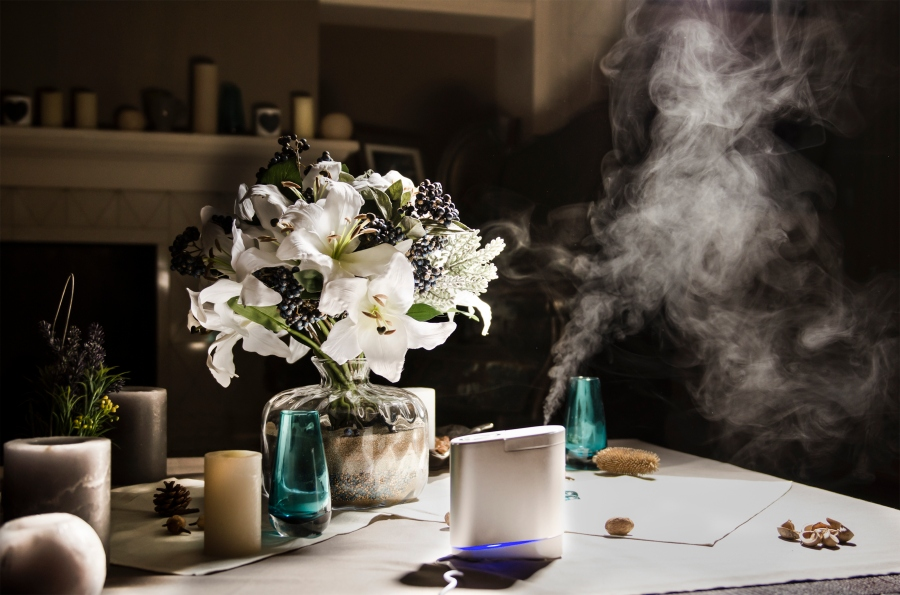 flowers and steam humidifier